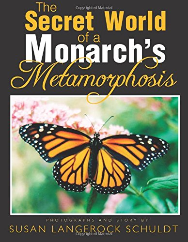 9781625105837: The Secret World of a Monarch's Metamorphosis