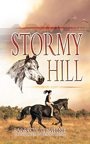 9781625164636: Stormy Hill