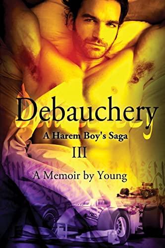 9781625261168: Debauchery (A Harem Boy's Saga)