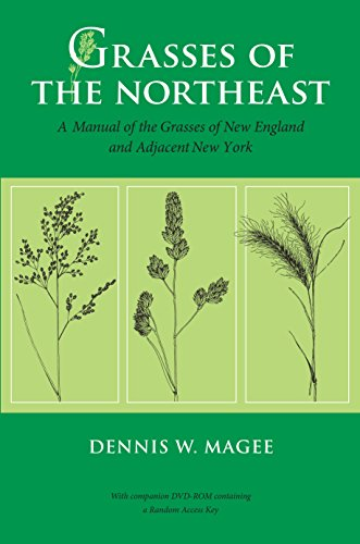9781625340986: Grasses of the Northeast: A Manual of the Grasses of New England and Adjacent New York