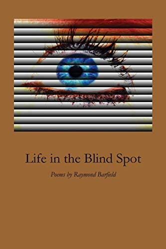 9781625490551: Life in the Blind Spot