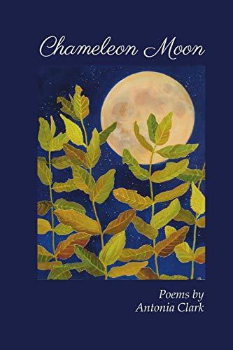 9781625490971: Chameleon Moon