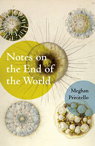 9781625579621: Notes on the End of the World