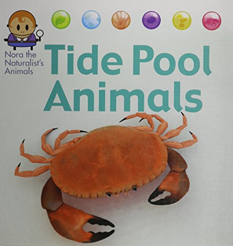 Tide Pool Animals (Nora the Naturalist's Animals): West, David