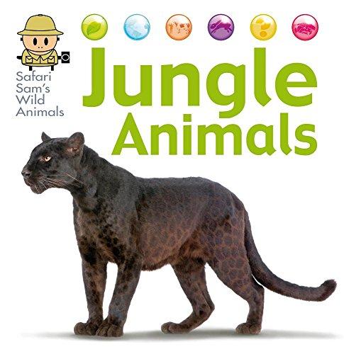 Jungle Animals (Hardcover): David West