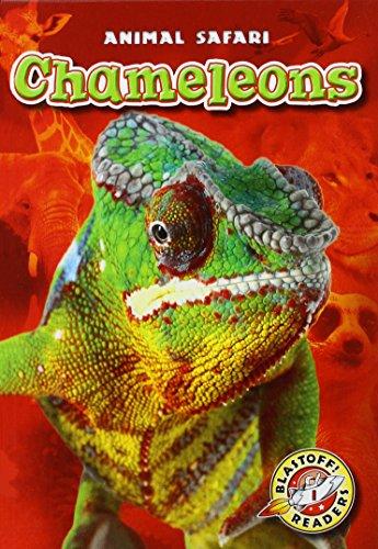 Chameleons (Library Binding): Kari Schuetz