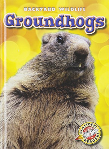 9781626170575: Groundhogs (Blastoff! Readers: Backyard Wildlife: Level 1 (Library))