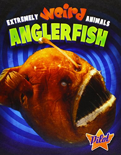 9781626170728: Anglerfish (Extremely Weird Animals)