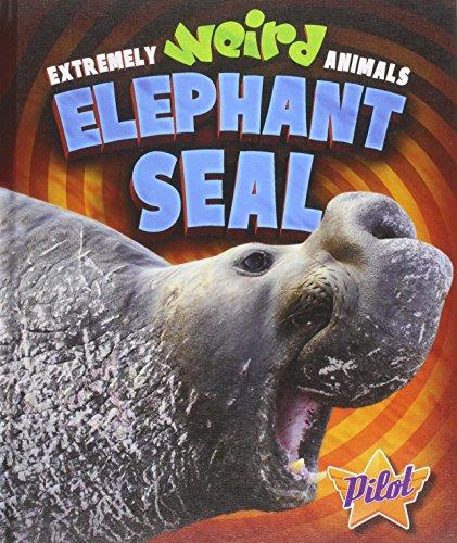 9781626170742: Elephant Seal (Extremely Weird Animals)