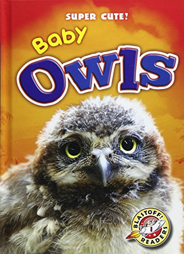 Baby Owls (Hardcover): Christina Leaf