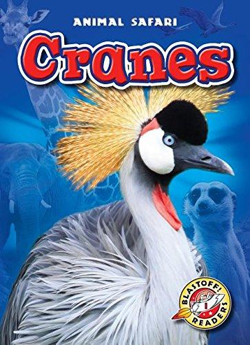 9781626172111: Cranes (Animal Safari: Blastoff Readers, Level 1)