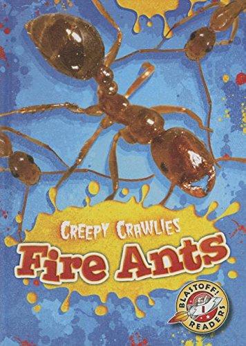 Fire Ants (Hardcover): Kari Schuetz