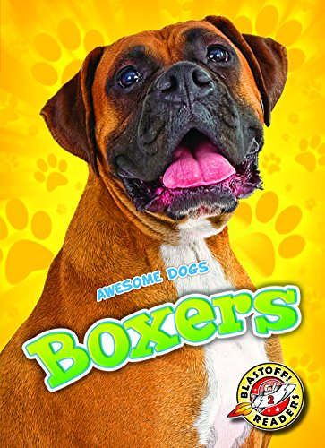 9781626173033: Boxers (Awesome Dogs)