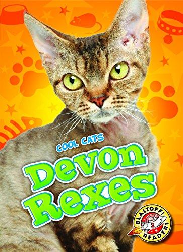 9781626173095: Devon Rexes (Blastoff Readers. Level 2)