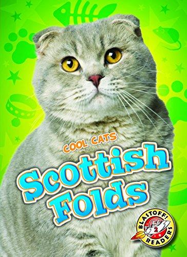 9781626173149: Scottish Folds