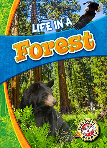 9781626173170: Life in a Forest (Biomes Alive!)