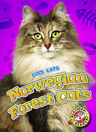 9781626173972: Norwegian Forest Cats (Cool Cats)