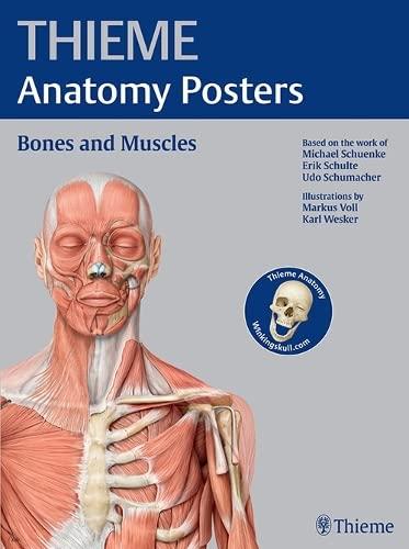 9781626231429: THIEME Anatomy Posters Bones and Muscles, Latin Nomeclature