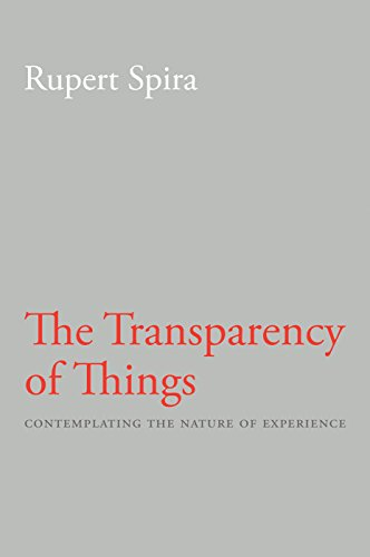 9781626258808: The Transparency of Things: Contemplating the Nature of Experience