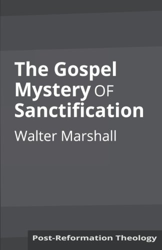 9781626309975: The Gospel Mystery of Sanctification