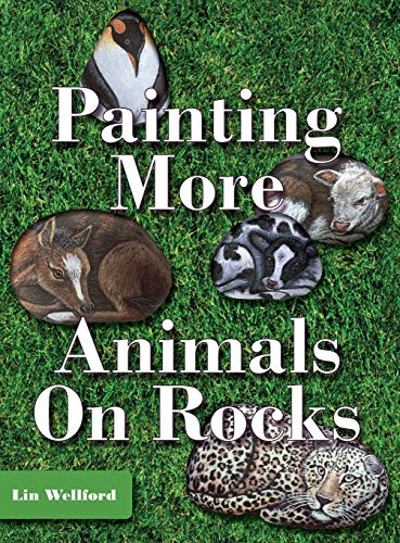 9781626540958: Painting More Animals on Rocks