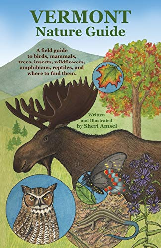 9781626549432: Vermont Nature Guide: A field guide to birds, mammals, trees, insects, wildflowers, amphibians, reptiles, and where to find them
