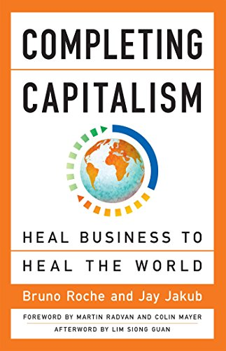 Completing Capitalism: Heal Business to Heal the: Bruno Roche, Jay