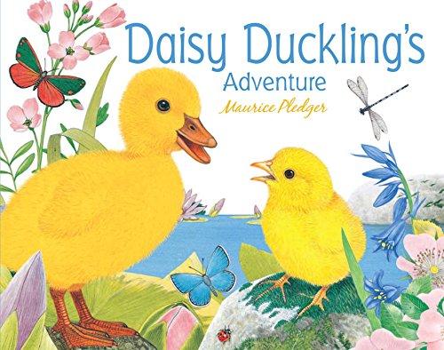9781626860155: Daisy Duckling's Adventure