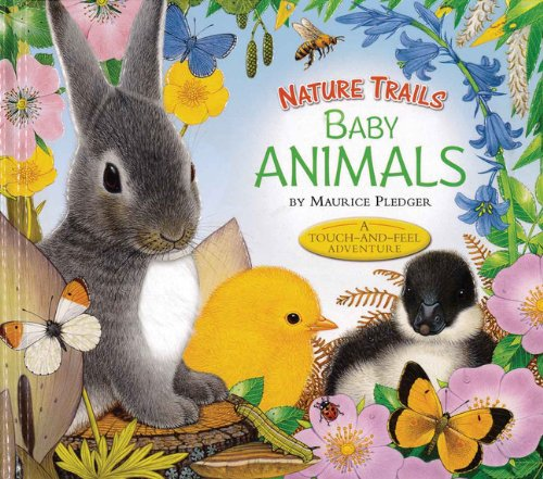 9781626860384: Nature Trails: Baby Animals (Maurice Pledger Nature Trails)