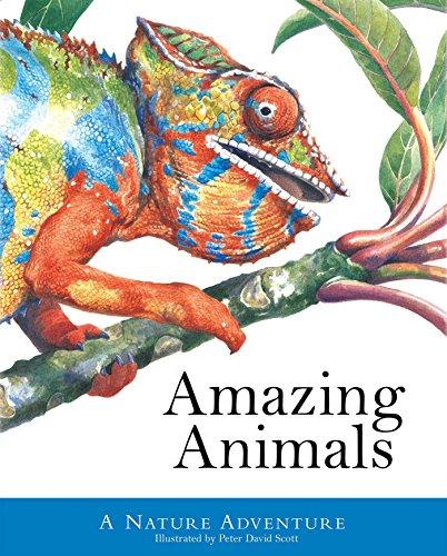 9781626863231: Amazing Animals (Peter David Scott)