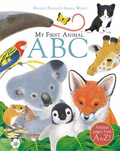 9781626867765: My First Animal ABC