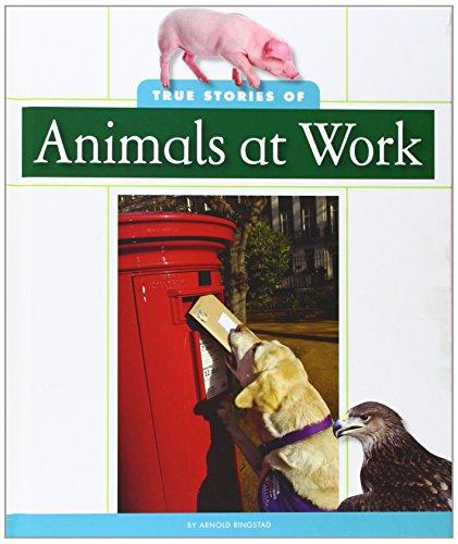True Stories of Animals at Work: Arnold Ringstad