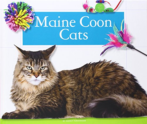 Maine Coon Cats (Hardback): Nancy Furstinger