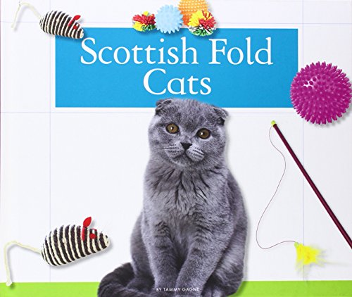 Scottish Fold Cats (Domestic Cats): Gagne, Tammy