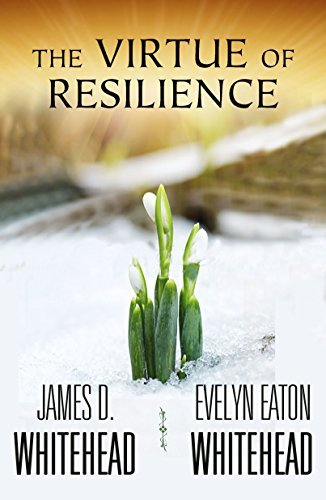 9781626981607: The Virtue of Resilience