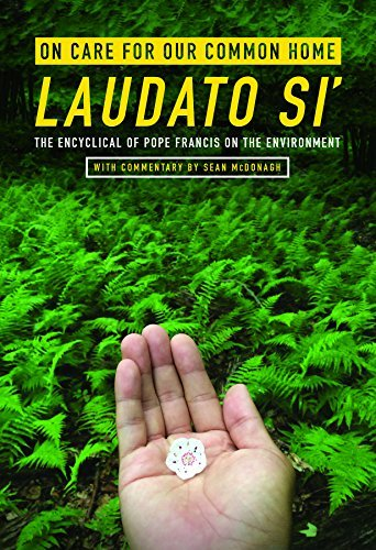 On Care for Our Common Home, Laudato Si': The Encyclical of Pope Francis on the Environment ...