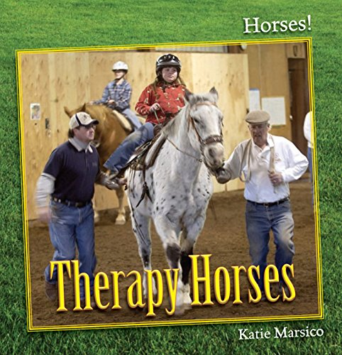 9781627120890: Therapy Horses