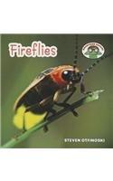 Fireflies (Backyard Safari): Otfinoski, Steven