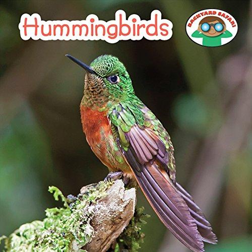Hummingbirds (Backyard Safari): Otfinoski, Steven