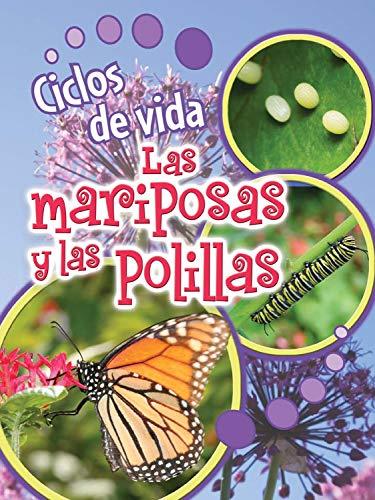 9781627174015: Ciclos de vida de las mariposas y las polillas / Life Cycles of Butterflies and Moths (Ciclos De Vida (Life Cycles))