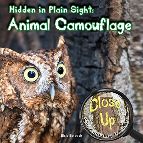 Hidden in Plain Sight: Animal Camouflage (Close-Up on Amazing Animals): Belback, Elsie