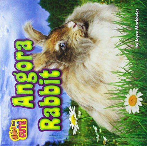 9781627248471: Angora Rabbit (Weird But Cute)