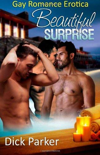 9781627615327: Beautiful Surprise: Gay Romance Erotica