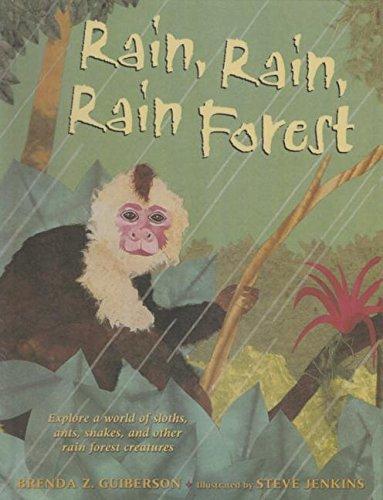 9781627657556: Rain, Rain, Rain Forest