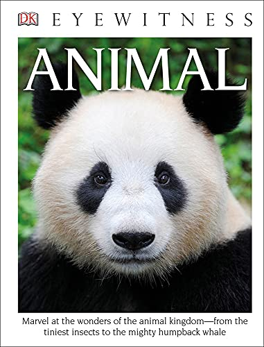 9781627659697: Animal (DK Eyewitness Books)