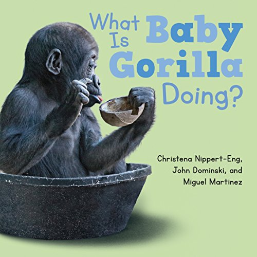 9781627794794: What Is Baby Gorilla Doing?