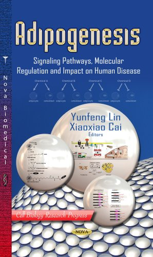 Adipogenesis (Cell Biology Research Progress)