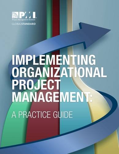 9781628250350: Implementing Organizational Project Management: A Practice Guide