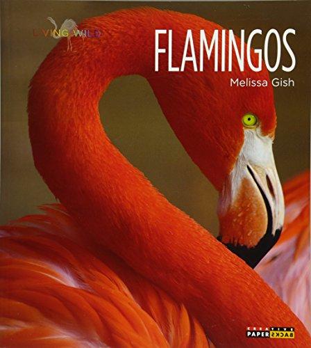 Living Wild: Flamingos: Gish, Melissa