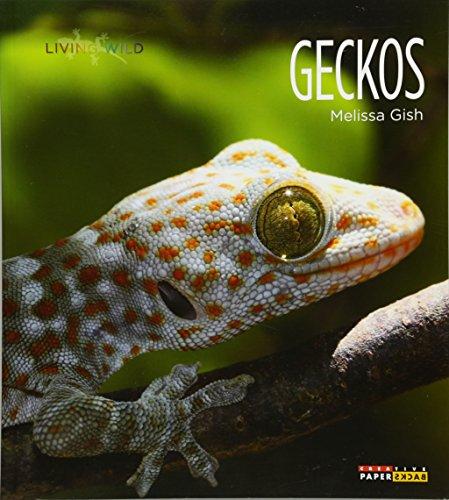 9781628320039: Geckos